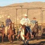 Glaser Ranch Cattle Round Up